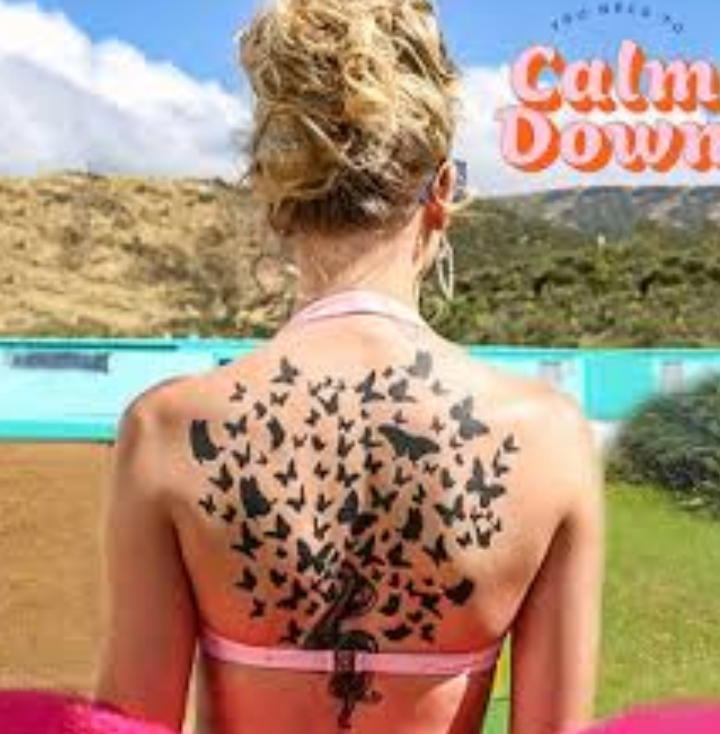 taylor-swift-you-need-to-calm-down-track-review